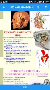 Топографическая, анатомия, лекционный, материал